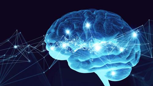 3 хобби, которые могут улучшить вашу память и сохранить здоровый мозг